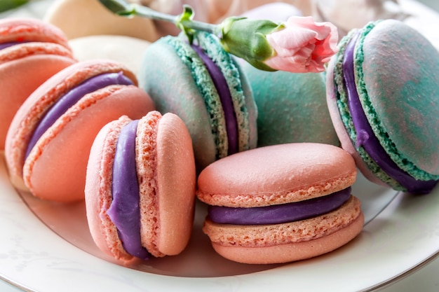 Sweet and colorful french macaroons or macaron in ceramic white plate. pastel colours