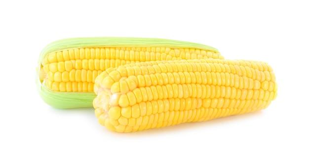 흰색 배경에 고립 된 달콤한 옥수수
