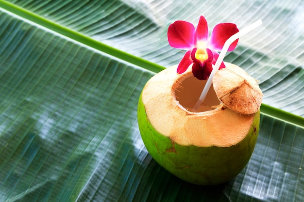 Sweet green coconuts water with drinking straw on banana leaf