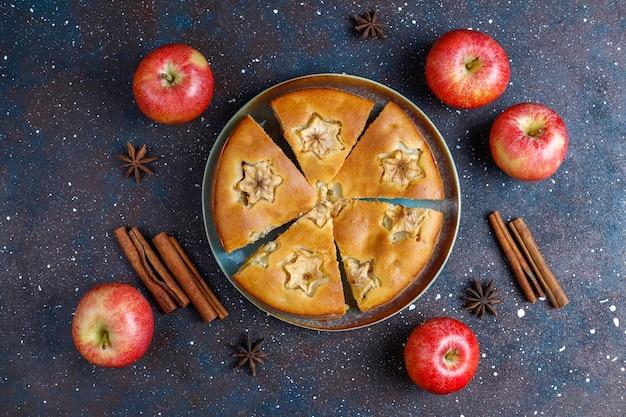 계피와 함께 달콤한 수제 사과 케이크.