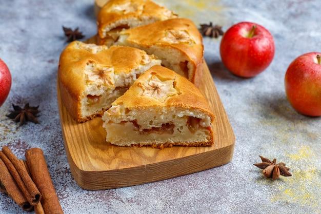 Sweet homemade apple cake with cinnamon.
