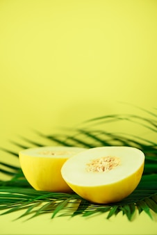 Sweet melon over tropical green palm leaves. pop art design, creative summer concept. raw vegan food.