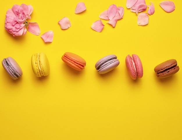 Sweet multi colored macarons with cream and a pink rose bud with scattered petals