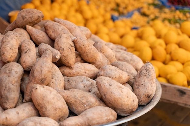 Sweet potatoes named batata on counter market on background of lemons.