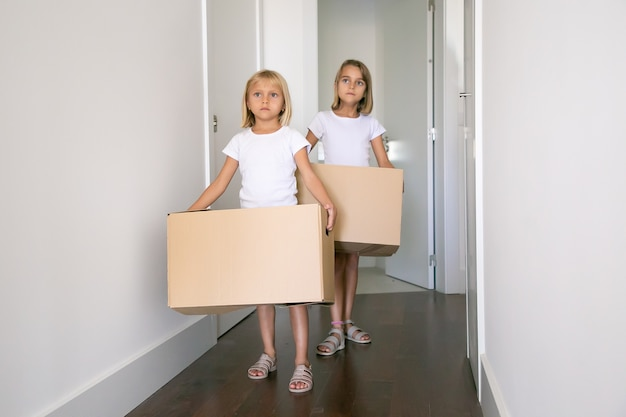 Sweet pretty girls moving in new flat, carrying carton boxes in corridor