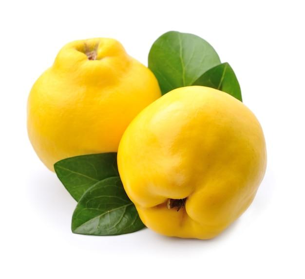 Сладкая айва с изолированными листьями. спелые плоды. яблочно-айвовый.