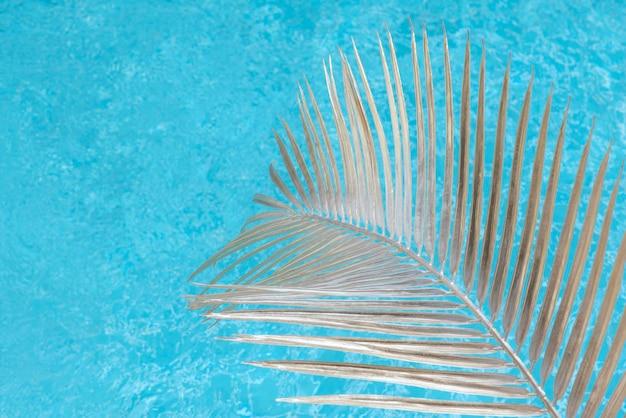Piscina con foglia di palma alla luce del sole