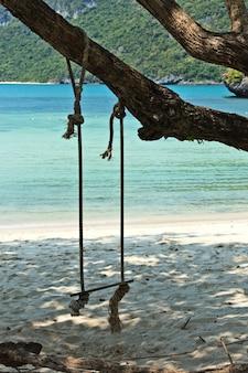 昼間に島のビーチで木からぶら下がっているスイング