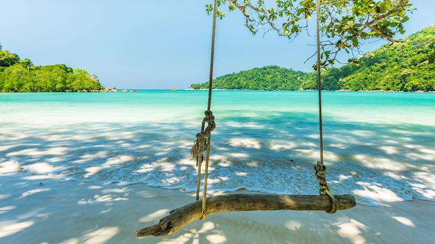 Swing hanging on tree at the tropical bach located surin island, thailand
