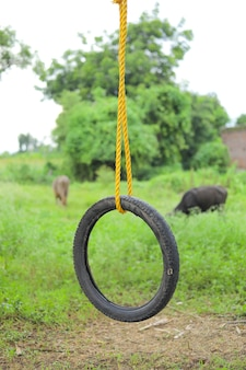 Swing made by tyre and rope on tree at green field