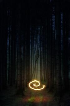 森の真ん中で光を渦巻く