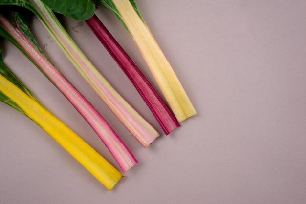Swiss chard veggie. healthy rainbow leafy eatable vegetable. plant flat lay on gray background.