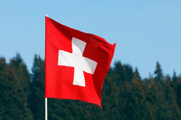 森の上のスイスの旗