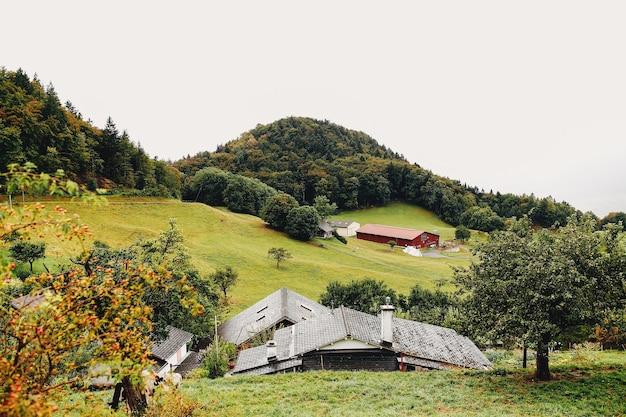 9 월에 스위스 알프스 산 경치를 볼 수 있습니다. 고품질 사진