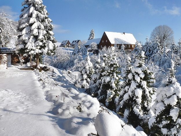 Switzerland wintry saupsdorf winter saxon