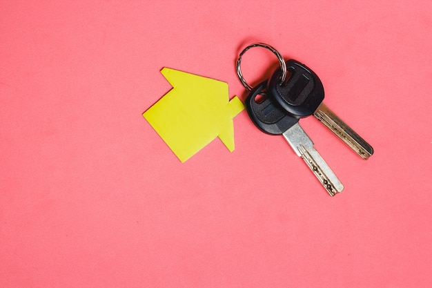 Symbol of house with two silver keys on pink background