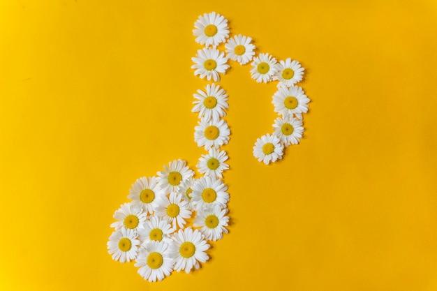 Символ музыкальных нот из белых ромашек на желтом фоне