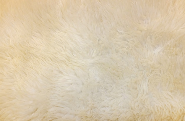 Synthetic fur cream color texture for the background.