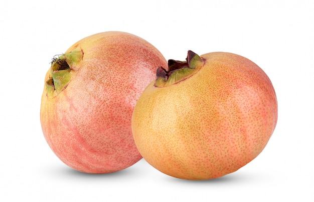 Syzygium jambosまたは白で隔離されるローズアップル