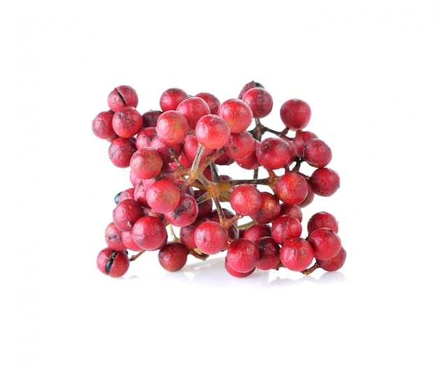 Szechuan pepper (zanthoxylum piperitum), fruits isolated