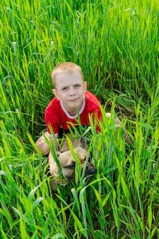 草の中の彼の犬と一緒に赤いtシャツとかわいい男の子