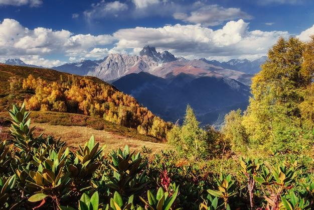 魔法の秋の風景と雪をかぶった山頂。 tのビュー