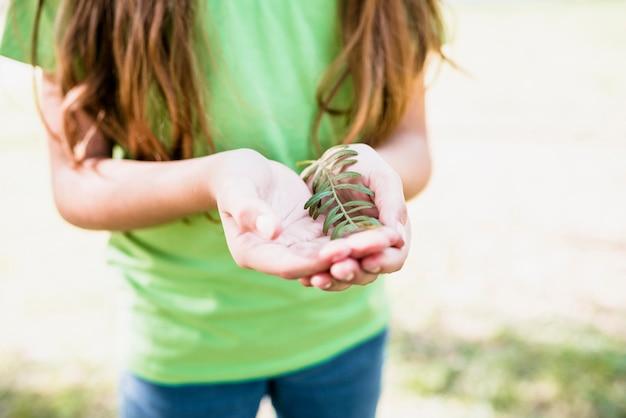 小枝を手で保持している緑のtシャツの女の子のクローズアップ