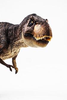 ティラノサウルスtレックス、白い背景の上の恐竜