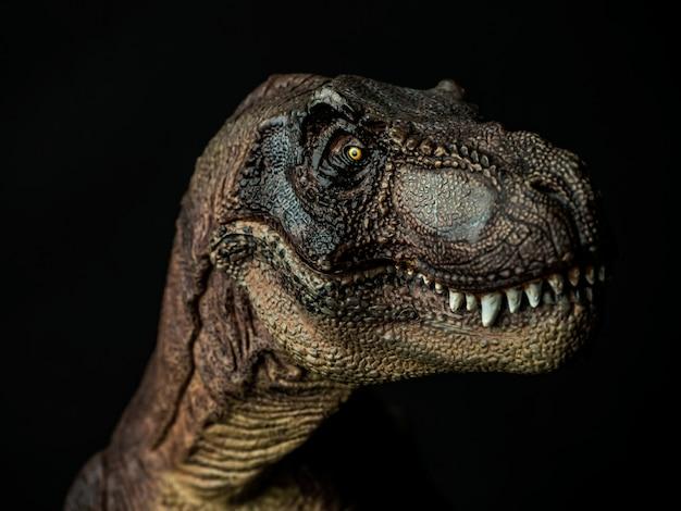 黒のティラノサウルスtレックス恐竜