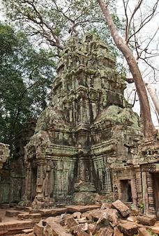 タプローム寺院、アンコールワット、シェムリアップ、カンボジア