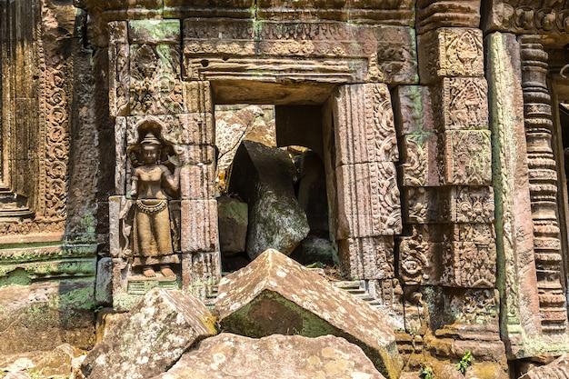 Ta prohm temple ruins in angkor wat in siem reap, cambodia