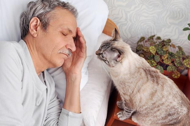 Полосатый кот смотрит на спящего старшего