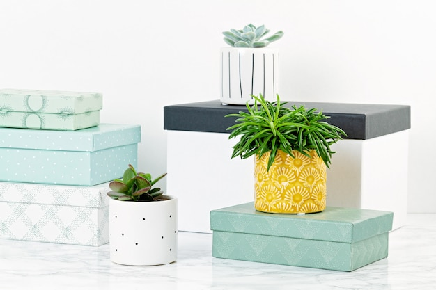 Table top with  boxes for arrangement, starage, and plants in pots. cozy and comfortable home concept