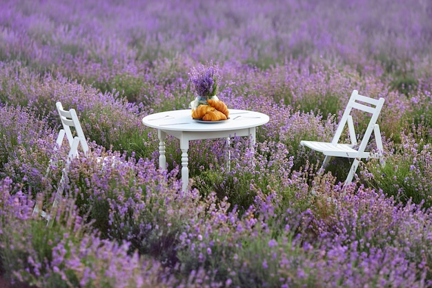 Table with croissants and chairs in lavender field