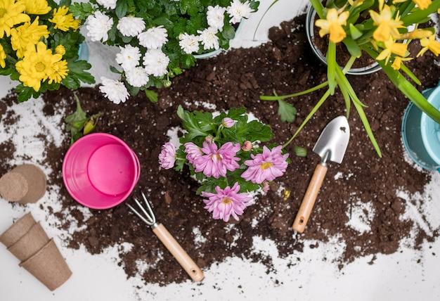 土壌、植物、水まき缶、植木鉢のテーブル