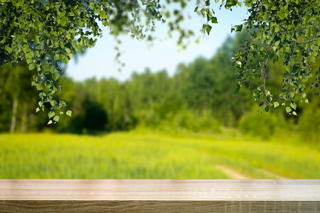 森のテーブルの木の背景。日光とぼやけた緑の夏の森の背景。高品質の写真