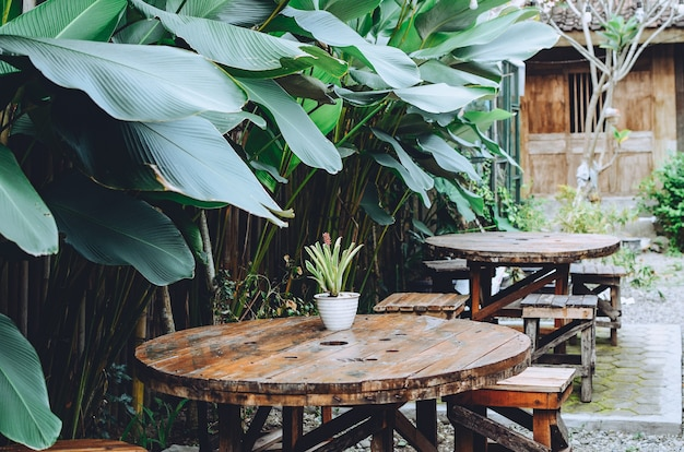 Tables and chairs in a coffee shop with an outdoor theme