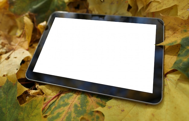 Tablet lies on the fallen yellow leaves