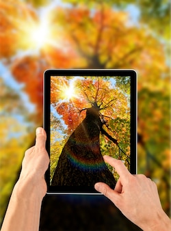 A tablet ps like ipades on the autumn backgrounds