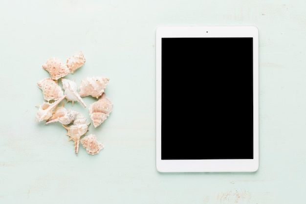 Tablet with shells on light background