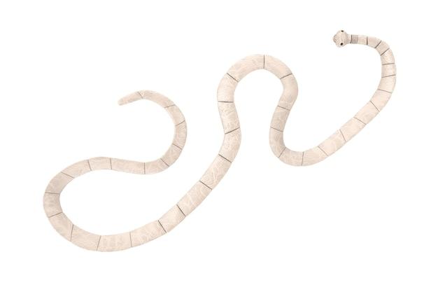 Макрофотография ленточного червя taenia solium под микроскопом на белом фоне. 3d рендеринг