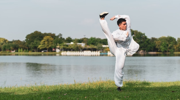 Tai chi chuan master workout in the park, chinese martial arts workout.
