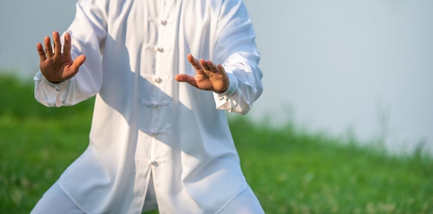 Tai chi chuan master workout in the park, chinese martial arts.