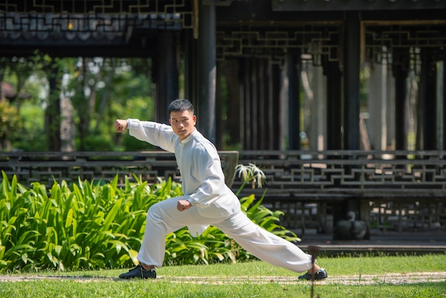Азиатский человек разрабатывая с хиом tai в утре на парке, китайскими боевыми искусствами, здоровой концепцией заботы на всю жизнь.