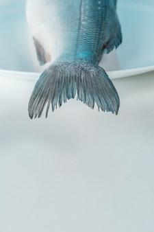 흰색 접시에 신선한 농어 물고기의 꼬리