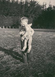 Taitapuで子羊