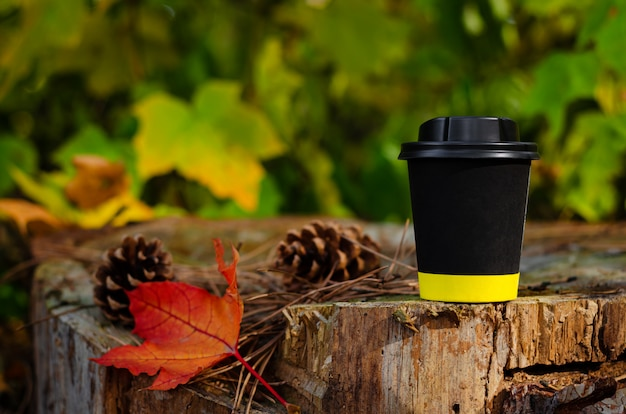 Take away black coffee cup with lid on stump in autumn park background. copy space, mock up