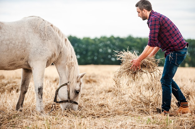 Taking care of his favorite horse. side view of young farmer stretching out bottle of hay to a horse while standing in the field