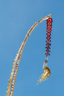 A tall bamboo hindu offering called a penjor, kintamani, traditional balinese