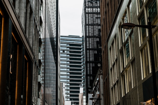 Edifici moderni per uffici alti